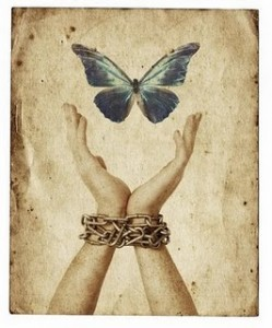 free-as-a-butterfly